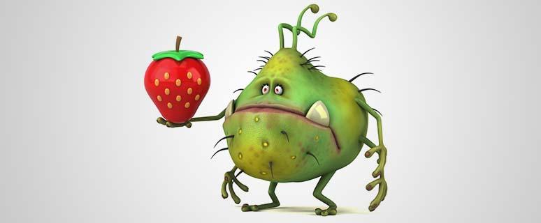 Gesunde Bakterien Darm Präbiotika